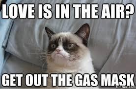 Haha Meme - grumpy cat haha meme 2015 viral viral videos