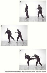 31 best jeet kune do jkd images on pinterest martial arts