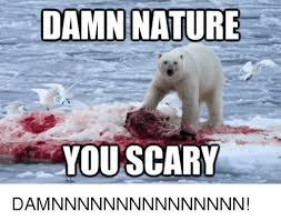 Damn Nature You Scary Meme - damn nature you scary damnnnnnnnnnnnnnnn meme on me me