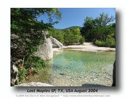 Texas where to travel in august images 46 best lost maples images state parks texas jpg