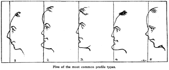 drawing human faces heads what features determine
