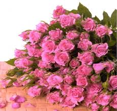 Flowers For Mom Flowers For Delivery Over 100 Blooms Of Pink Mini Roses