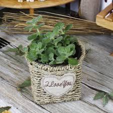 Table Top Herb Garden Aliexpress Com Buy Yellow Tabletop Creative Basket Shape