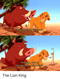 Lion King Memes - kia whats eating your nothing ne s at the top of the food chain the