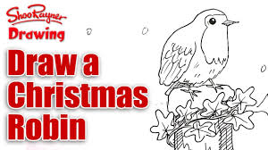 how to draw a christmas robin youtube