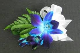 blue orchid corsage and company