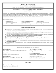 Resume Samples With Skills by Director Resume