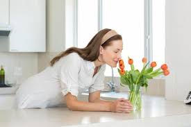 mauvaise odeur chambre éliminer les mauvaises odeurs dans une maison