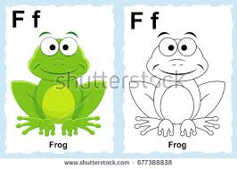 frog stock images royalty free images u0026 vectors shutterstock