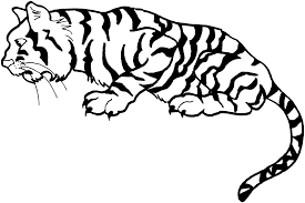 tiger color page free printable tiger coloring pages for kids