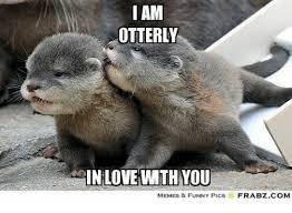 Otter Memes - 25 best memes about otter memes otter memes