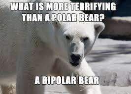 Bipolar Meme - bipolar meme on imgur