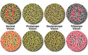 Can A Woman Be Color Blind Blue Green Color Blindness Prevalence Periodic Tables