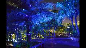 Remote Control Landscape Lighting by Great Sale Garden Laser Light Landscape Light Garden