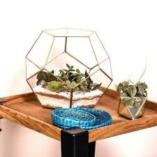 terrariums u2013 malaquita design
