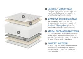 Serta Organic Crib Mattress by Sealy Soybean Foamcore Crib Mattress How To Choose A Sealy Crib