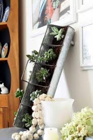 Vertical Succulent Garden Indoor - a vertical succulent garden can be propped on a table or hung on