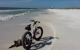 Wildfire Designs Fat Bike by How Useful Is A Fat Bike Really Page 2 Bike Forums