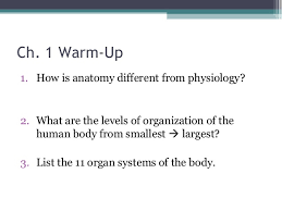 What Is Human Anatomy And Physiology 1 Anatomy U0026 Physiology Lecture Notes Ch 1 Introduction