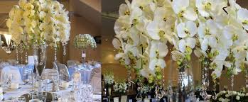 wedding backdrop hire melbourne garden wedding decoration hire melbourne melbourne wedding