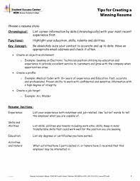 Resume Online Builder Resume Chronological Or Functional Resume How To Cite Education