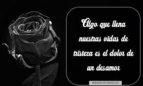 imagenes en negras nuevas imágenes de rosas negras con frases de desamor