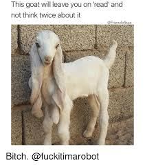 Funny Goat Memes - this goat will leave you on read and not think twice about it