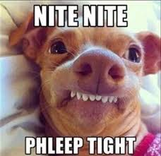 Good Nite Memes - 20 best goodnight memes for your friends meme and memes