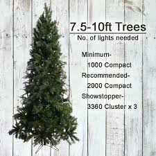 how manys for tree 11 christmastrees