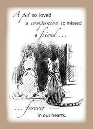 pet condolences 30 best pet sympathy images on pet sympathy cards