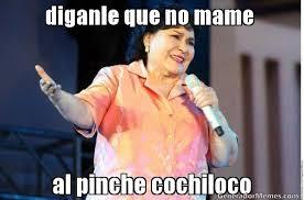 Memes De Cochiloco - diganle que no mame al pinche cochiloco meme de diganle