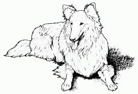 free dog coloring sheet printable brandsomasz com