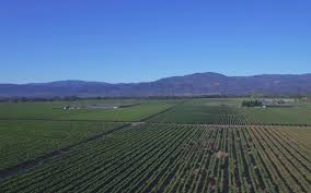 thanksgiving napa the best of california wine country travel leisure