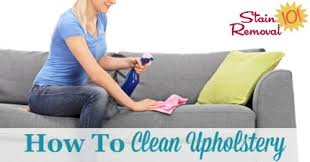 What Is The Best Upholstery Cleaner For Sofas How To Clean Upholstery Tips And Instructions