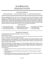 Job Summary Examples For Resumes by 33 Best Resumes Images On Pinterest Resume Examples Resume