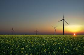 the energy debate renewable energy cannot replace fossil fuels