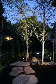 How To Install Low Voltage Led Landscape Lighting Diy Low Voltage Led Landscape Lighting How To Install Low Voltage