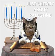 cat menorah current event cat of the day bibi and his palestinian policy