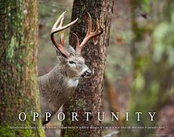 amazon com whitetail deer motivational poster art print 11x14 bow