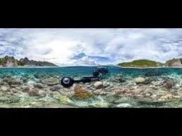 watch online chasing coral 2017 full movie hd trailer chasing coral full movie hd 2017 documentary youtube