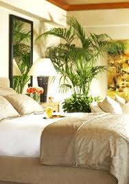ideas for decorating bedroom tropical bedroom ideas tropical bedroom tropical room ideas