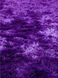 Large Purple Rugs Quirk Purple Shag Rug From The Shag Rugs Collection At Modern Area