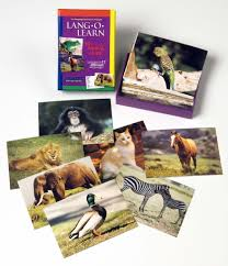 lang o learn animal cards stages learning materials