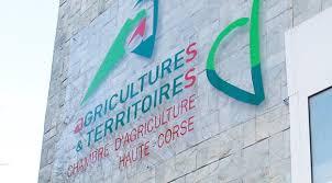 chambre d agriculture la délocalisation de la chambre d agriculture 2b fait des remous