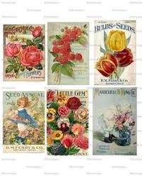 vintage botanical prints two on my wall in canvas form
