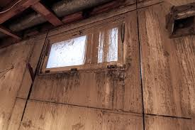 windows areyoubusy