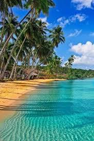 best 25 jamaica ideas on jamaica weather