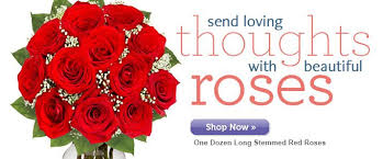 send roses send roses for valentines day send flowers for valentine39s day 20