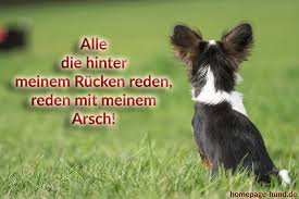 lustige hundesprüche homepage hund hundebilder mit sprüchen hundesprüche