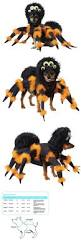 top 25 best small dog halloween costumes ideas on pinterest